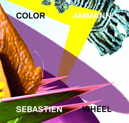 Sebastien Ammann Color Wheel Skirl Records